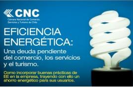 Seminario de Eficiencia Energética: Una deuda pendiente del comercio, los servicios y el turismo